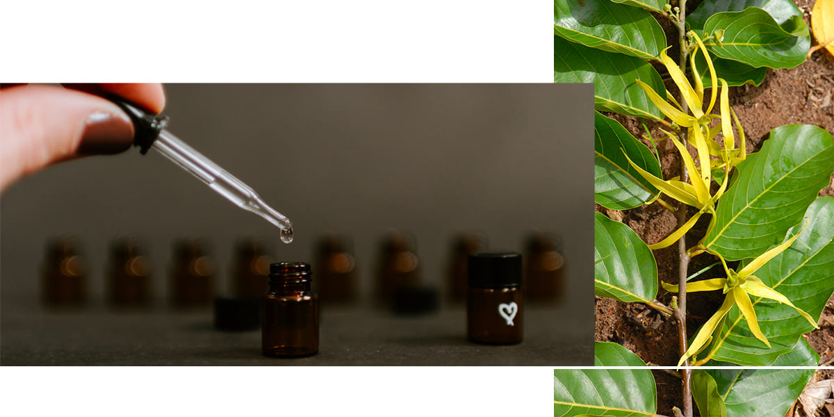 huiles-essentielles-douche-ylang-skinjay
